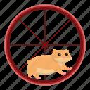 face, fitness, hamster, nature, sport, wheel