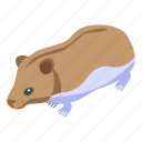 cartoon, face, hamster, house, isometric, nature, silhouette
