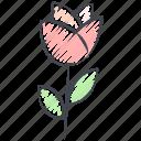 colored pencil filled, flower, love, rose, tulip, valentine, valentine's day
