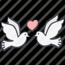 dove, love, valentine's day, pigeon, valentine, lovely, peace