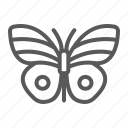 butterfly, easter, fly, insect, spring, summer icon