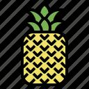 fruit, hawaii, natural, organic, pineapple