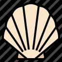 animals, aquarium, hawaii, life, sea, seashell