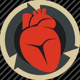 cardio, circulation, heart icon