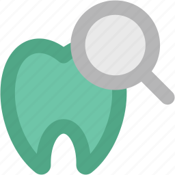 dental health, dental hygiene, dentistry, human tooth, magnifying glass, odontology, stomatology icon