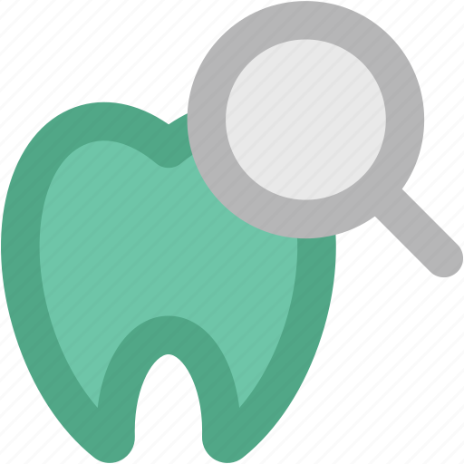 dental health, dental hygiene, dentistry, human tooth, magnifying glass, odontology, stomatology icon