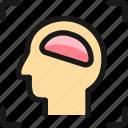 brain, head