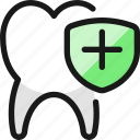 dentistry, tooth, shield