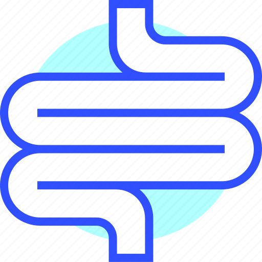 fit, fitness, game, health, intestine icon