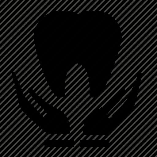 dental, healthcare icon