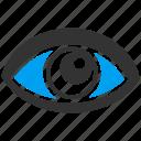 eye, eyeball, look, see, view, vision, watch