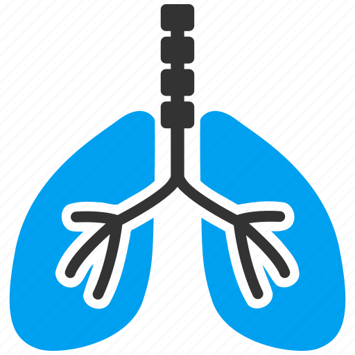 anatomy, body, breath system, breathe, lung, lungs, respiratory icon