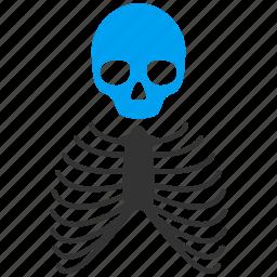 anatomy, body, bones, dead, death, skeleton, skull icon
