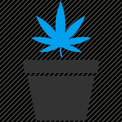 botany, cannabis, flower, greenery, hemp, marijuana, plant icon