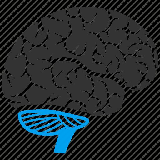 brain, human organ, idea, memory, mind, think, thinking icon