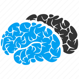 brain, brains, brainstorming, human organ, mind, neuro, think icon