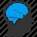 brain, memory, mind, thinking, human organ, idea, think