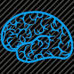 brain, human organ, idea, intellect, memory, think, thinking icon