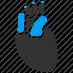 body, cardio, cardiology, heart, organ, pulse, surgery icon