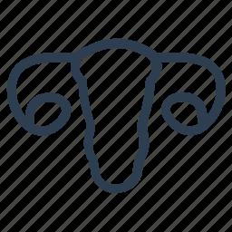 gynecology, reproductive, uterus icon