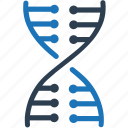 dna, genetics, genome icon