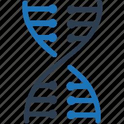 dna, genetics, genome icon