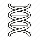 chromosome, dna, genes, genetics, genome, science icon