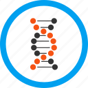 biology, genetics, genetic engineering, genome chain, dna spiral, genetical science, structure icon