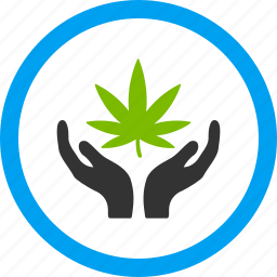 cannabis, care hands, drugs, marijuana, offer, pharmacy, weed icon
