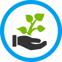 agriculture, charity, flower, growing project, hand, plant, startup icon