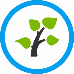 branch, ecology, environment, garden, growth, plant sprout, spring icon