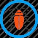 beetle, bug, cockroach, cucaracha, insect, kukaracha, roach icon