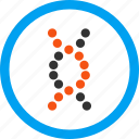 biology, dna spiral, genetic engineering, genetical science, genetics, genome chain, structure icon