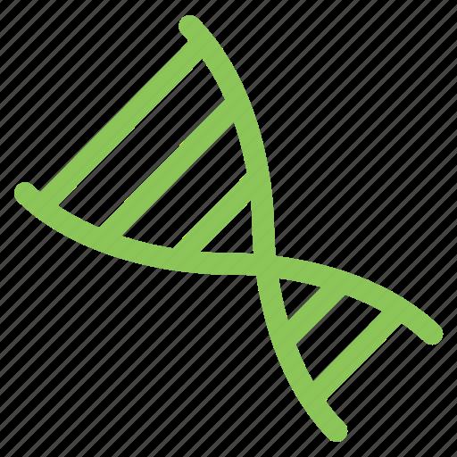 dna, genetic, genome, hospital icon
