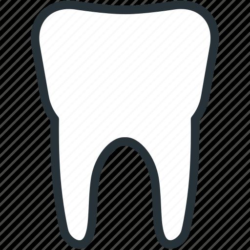 dentist, healthcare, medical, teeth icon