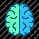 brain, health, healthcare, intelligence, medical, medicine, mind