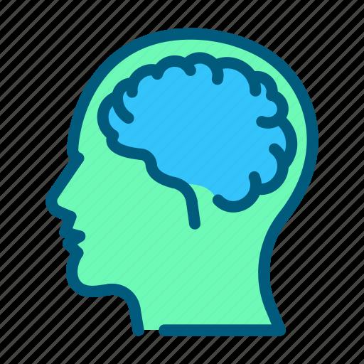 brain, head, health, healthcare, medical, neurology icon