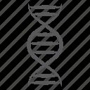 biology, biotechnology, dna, dna molecules, dna strand, genetics, heredity