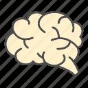 anaotmy, brain, education, human, intelligent icon