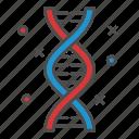 biologie, dna, gen, gene, human icon