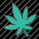 drugs, hemp, herbal, mariuhana, plant