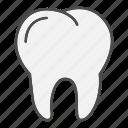 doctor, health, medical, teeth, tooth
