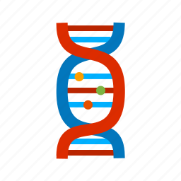 chemistry, dna, helix, molecule, spiral, strand, structure icon