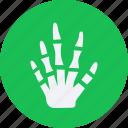 bone, drug, hand, health, healthcare, hospital, medical icon