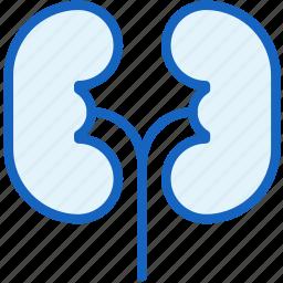 body, healthcare, liver, part icon
