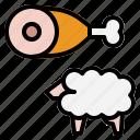 lamb, sheep, protein