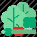 vetgetable icon