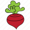 beetroot, bio, food, red, root, vegan, vegetable icon