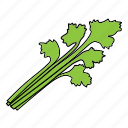 bio, celery, food, herb, product, vegan, vegetable icon