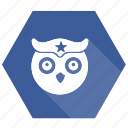birds, education, knowledge, owl, university icon